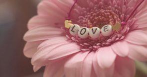 love-3388622_1920
